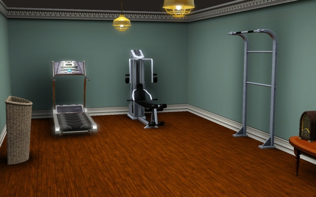 Gym/Dojo